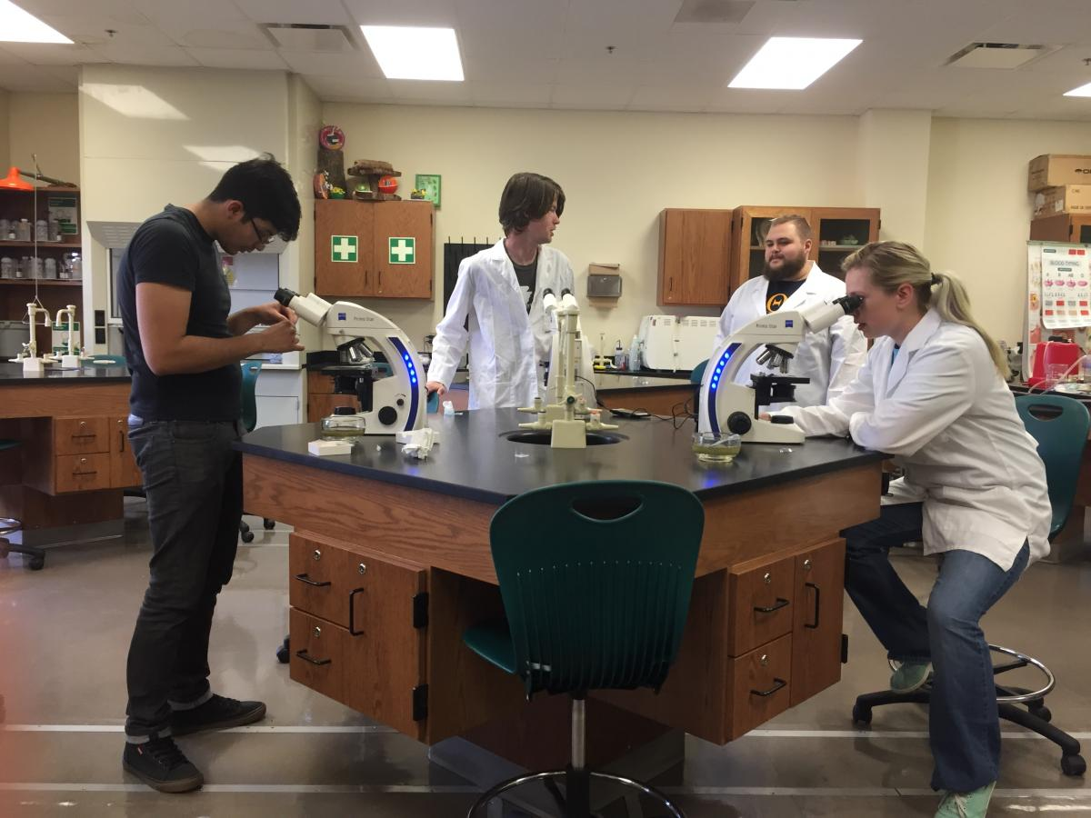 Andres Orellana, Timothy Tyler, Aaron Gatewood and Laura Bean looking at diatoms under the microscope.