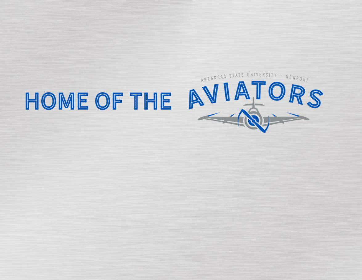 Home of the Aviators Logo